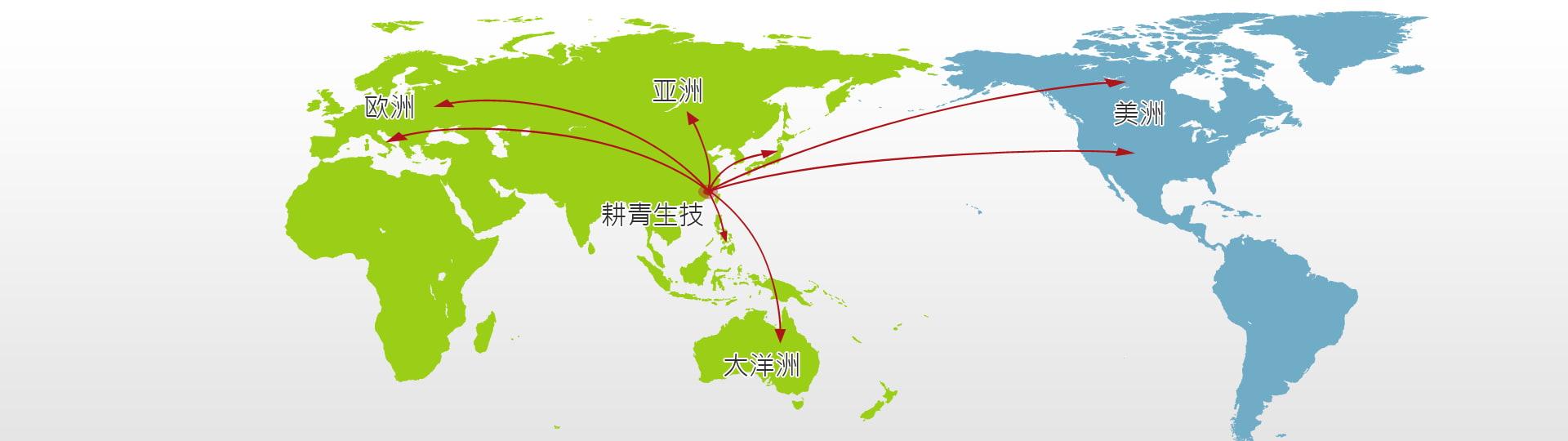 服务网络远达欧美